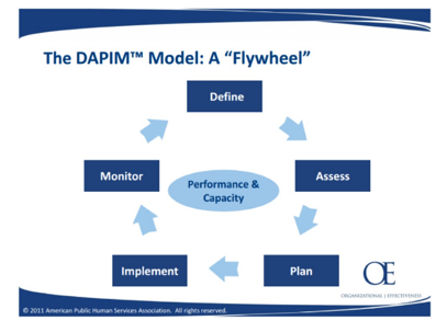 DAPIM Model Graphic