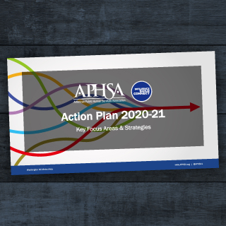 Illuminating Our Way Forward: 2020 Action Plan
